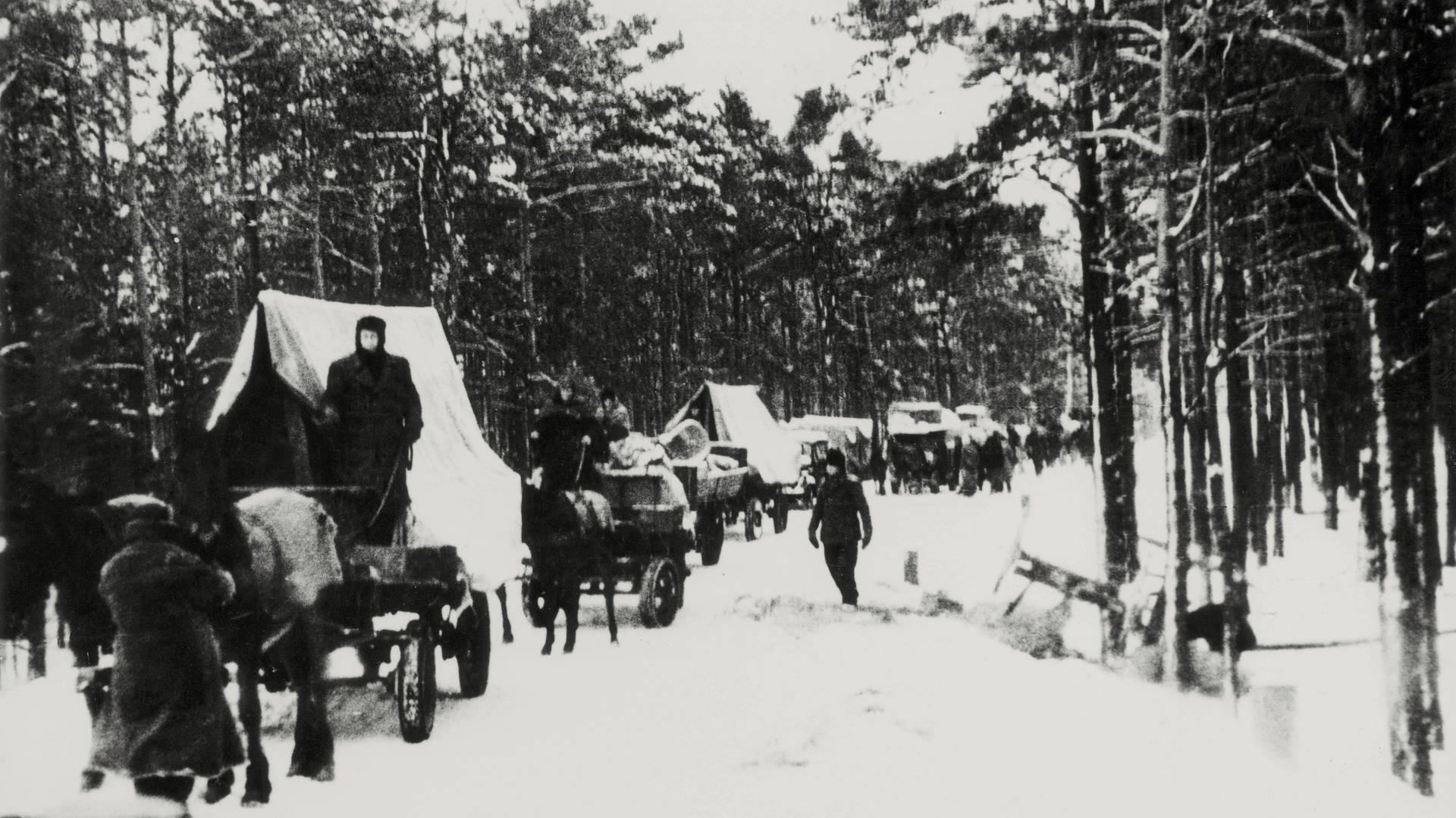 Flucht Und Vertreibung 2. Weltkrieg