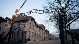"""Das Lagertor von Auschwitz mit der Aufschrift """"Arbeit macht frei"""". (Foto: dpa Bildfunk, Picture Alliance)"""