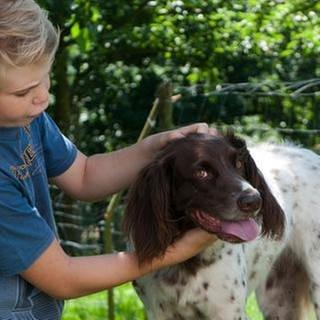 Ein kleiner Junge streichelt einen Hund (Foto: SWR, SWR -)