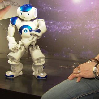 Roboter im Bionicum Nürnberg (Foto: SWR)
